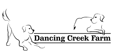 Dancing Creek Farm